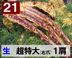 21) 極上生本タラバガニ 超特大(右爪)サイズ 1肩 約1.6kg