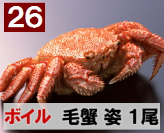26) 極上ボイル毛ガニ姿 特大 1尾  約700g
