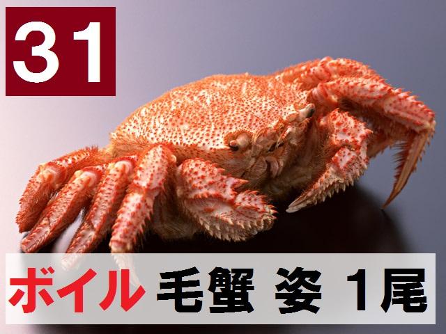 31) 極上ボイル毛ガニ姿 特大 1尾  約700g