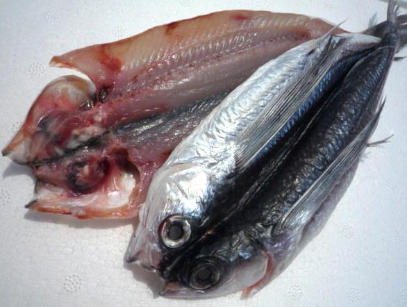飛魚 干物 中 (和歌山県産)