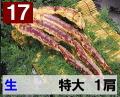 17) 極上生本タラバガニ 特大サイズ 1肩 約0.8kg