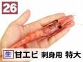 26) 甘エビ 刺身用 特大 甘み強 1kg (約50尾)