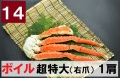 14) 極上ボイル本タラバガニ 超特大(右爪)サイズ  1肩 約1.6kg