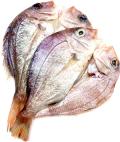 花鯛(チダイ) 大 干物 (長崎県産)