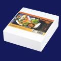 天紙 天ぷら敷紙 厚口(寺) 10000枚入(500枚×20袋)
