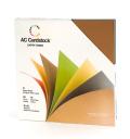 【スクラップブッキング 無地台紙ペーパーセット 12インチ】12X12 american crafts card stock - earth tones(アーストーン)