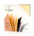 【スクラップブッキング 無地台紙ペーパーセット 12インチ】12X12 american crafts card stock - neutrals(ニュートラル)