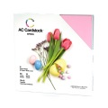 【スクラップブッキング 無地台紙ペーパーセット 12インチ】12X12 american crafts card stock - spring(スプリング:春)