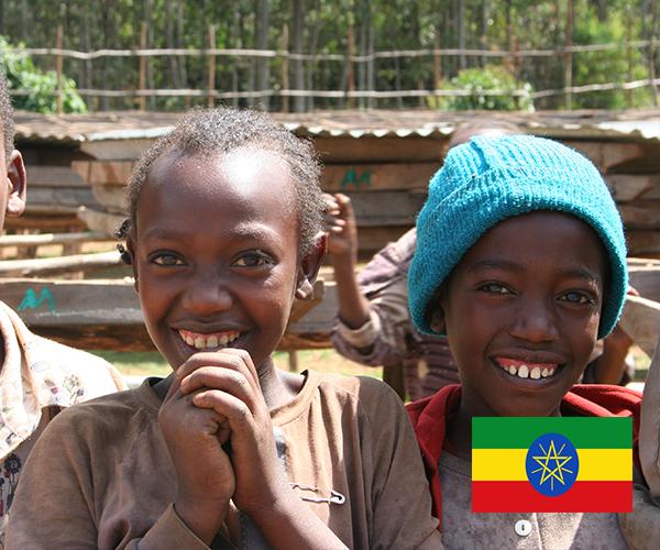 エチオピア イルガチェフェ
