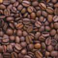 レギュラー 豆 ブラジル