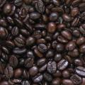レギュラー 豆 アイスコーヒー