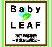 Baby Leaf 100g