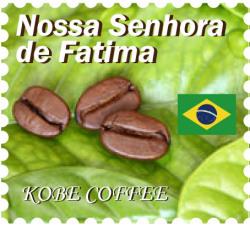 ブラジル ノッサ セニョーラ デ ファティマ