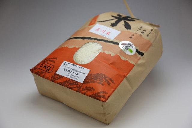 伊賀米キヌヒカリ