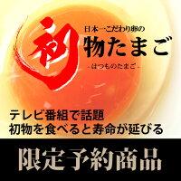「初物たまご」60個(6パック)