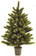 RSグローバル トレード社 クリスマスツリー 90cmH 【送料無料/一部地域除く】