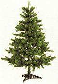 RSグローバル トレード社 クリスマスツリー 120cmH  【オーナメント付】【送料無料/一部地域除く】
