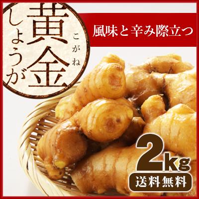 黄金生姜2kg