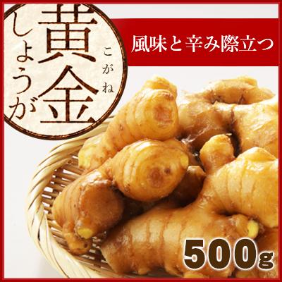 黄金生姜500g