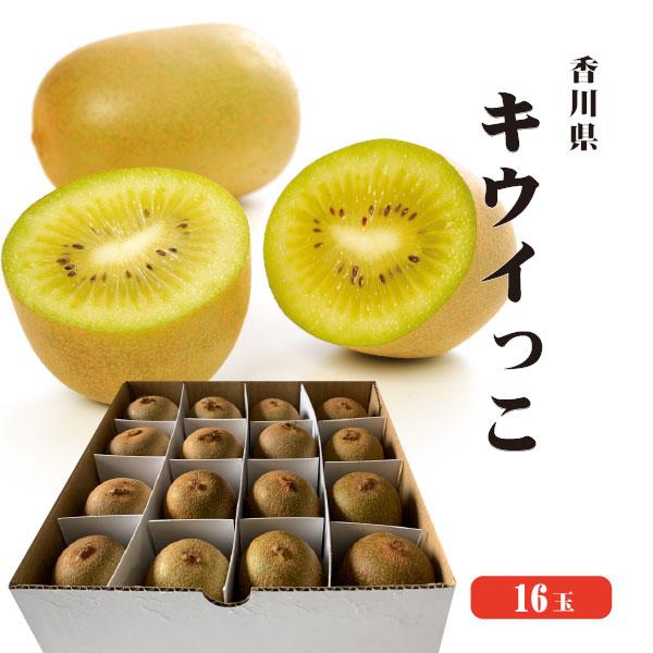 【送料無料】香川県産・世界最小キウイ・さぬきキウイっこ16玉入り