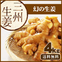 【送料無料】高知県産 三州生姜(さんしゅうしょうが) 4kg   /食用のため種生姜としてのご利用はできません