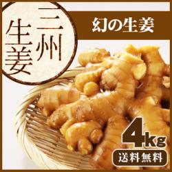 【送料無料】高知県産 三州生姜(さんしゅうしょうが) 4kg 辛味が強いから薬味に最適。ちょっとでも辛い!