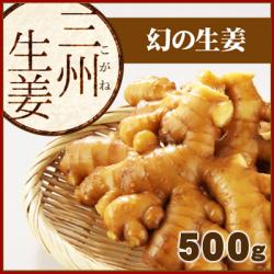 高知県産 三州生姜(さんしゅうしょうが) 500g