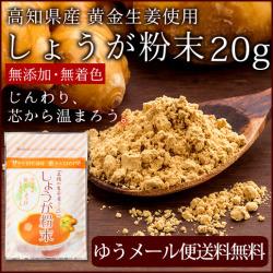 【ゆうパケット送料無料】 高知県産 黄金しょうが粉末 20g