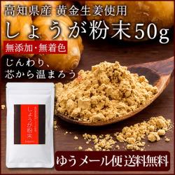 【ゆうパケット送料無料】 高知県産黄金しょうが粉末 50g