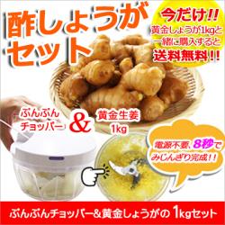 【送料無料】酢しょうがセット ぶんぶんチョッパー&黄金しょうが 1kg