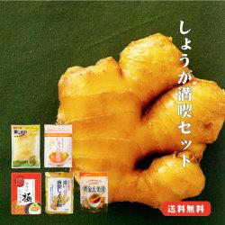 しょうが満喫セット 生姜国産パウダー 寿しがり 甘酢 ふりかけ