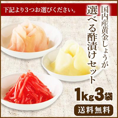 【送料無料】国産生姜使用 選べる酢漬けセット1Kg×3