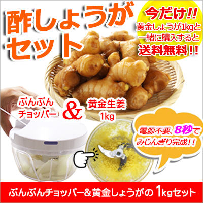ぶんぶんチョッパー&黄金生姜1kgセット
