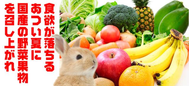 国産野菜 果物