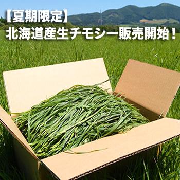 新鮮生牧草 北海道農場産チモシー 100g
