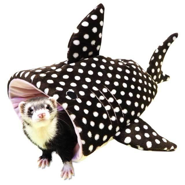 ジンベイザメの寝ぶくろ