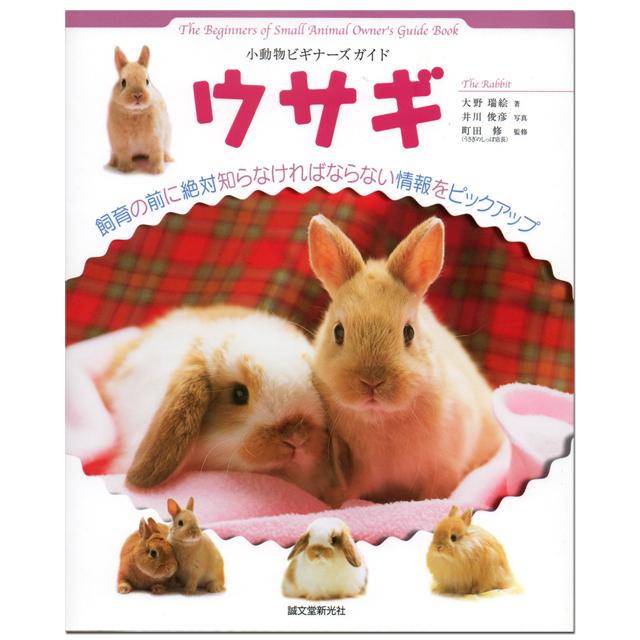 小動物ビギナーズガイド ウサギ