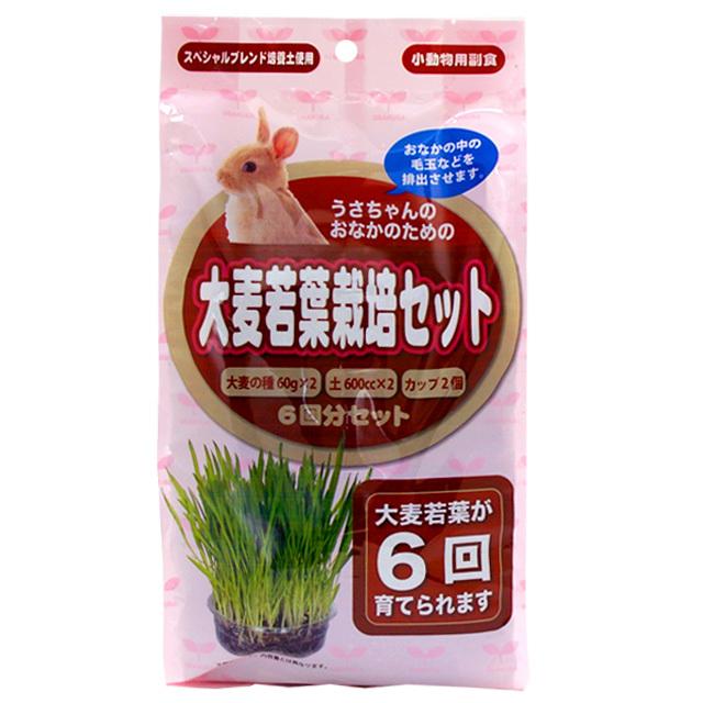 大麦若葉栽培セット 6回分セット