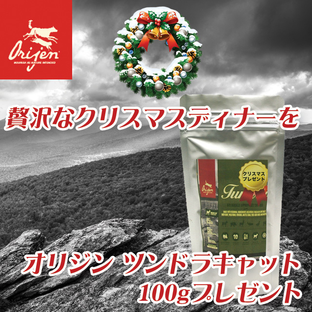 【X'mas スペシャルプレゼント】NEW オリジン ツンドラ・キャット 100g