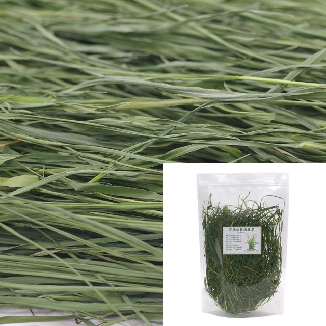 【無料プレゼント】究極の乾燥牧草 チモシー お試し品