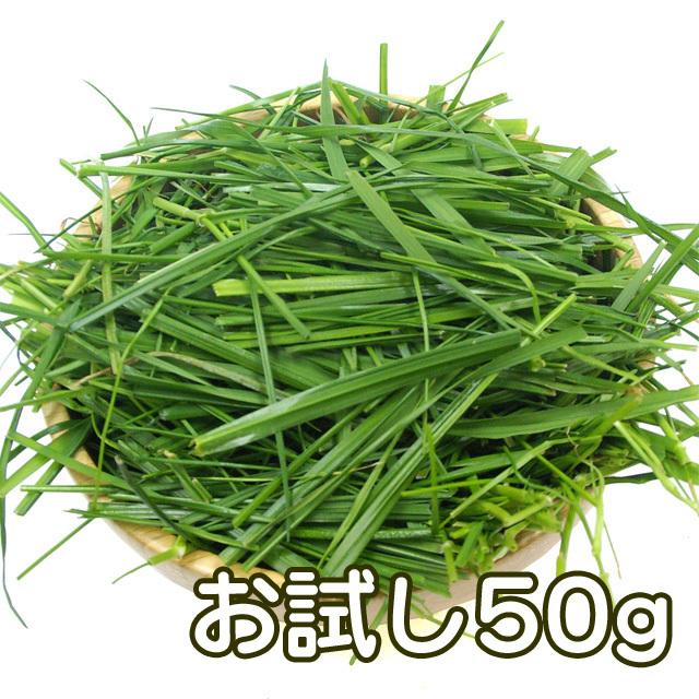 究極の牧草 生イタリアンライグラス 50g