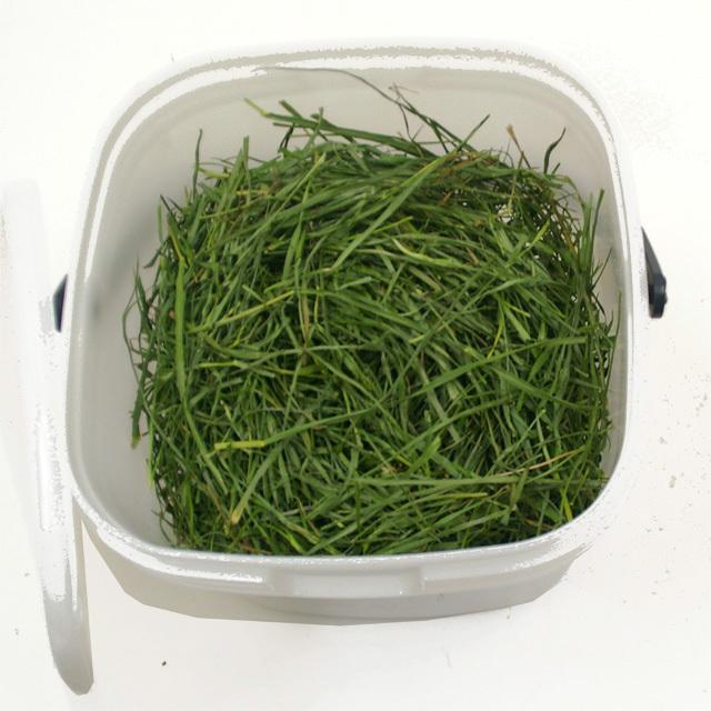 究極の乾燥牧草 イタリアンライグラス 120g (フードパッカー付き)