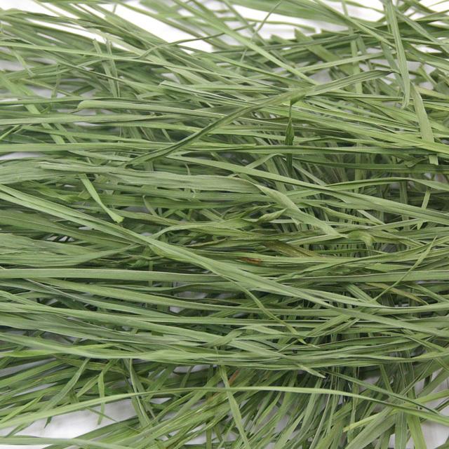 究極の乾燥牧草 オーチャードグラス 40g