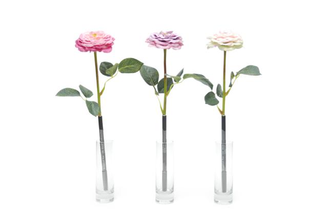 bonboog Botanical Pen モダンローズ
