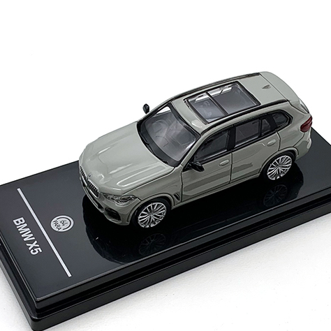 PARAGON/パラゴン BMW X5 ナルドグレー RHD