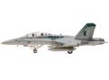 M-SERIES/エム シリーズ F/A-18D ホーネット アメリカ海兵隊 VMFA(AW)-121 2007