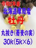 2年産!!北海道摩周産牡丹・丸抜き【30kg】5kg×6