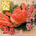 Estore-Taraba-sugata_2500