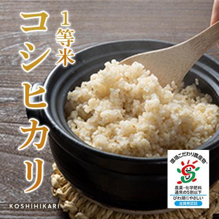 玄米-コシヒカリ
