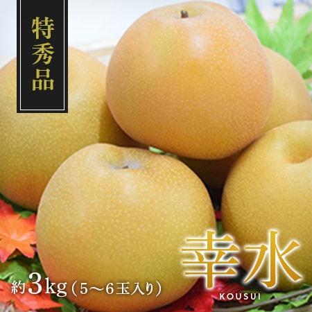 【特秀品】幸水 5~6玉入り